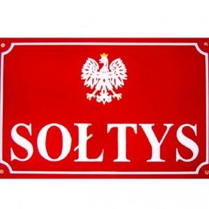 Wybory sołtysów i rad sołeckich w gminie Brwinów
