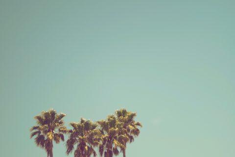 Jak ciekawie i niedrogo spędzić wakacje